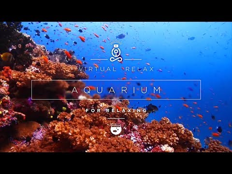 AQUARIUM 🐠 (FULL HD) - Relax with calm water and bubble sounds.