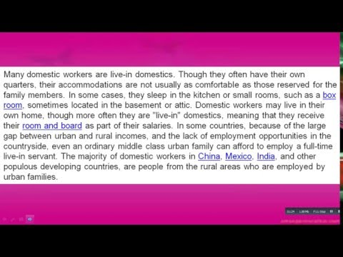 Who Are  Domestic Worker