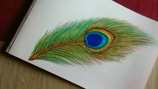 How to draw beautiful peacock feather