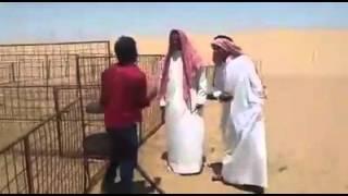 Funny moments for new guys in Saudi Arabia....