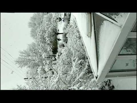 der-schöne-schnee-in-kelheim-❄️☃️❤️