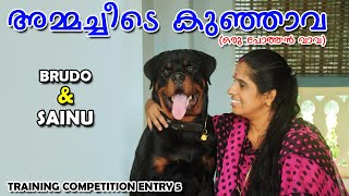 'TRY TO TRAIN 2021' :  സൈനു & ബ്രൂഡോ  : LAZE MEDIA DOG TRAINING COMPETITION : TRAINER ENTRY  5