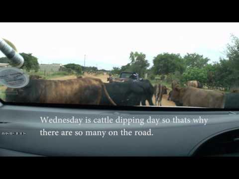 Driving around Zimbabwe