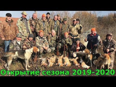Отличная охота на ЗАЙЦА/ЛИСУ #1 Чудове відкриття полювання на пушного звіра 2019-2020