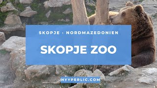 Ein rundgang durch den skopje zoo, in der hauptstadt von nord mazedonien. hier werden rund 300 tiere ausgestellt - mehr unter https://hyyperlic.com/thema/sko...