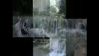 Yochen Amos - Transit Paso.flv