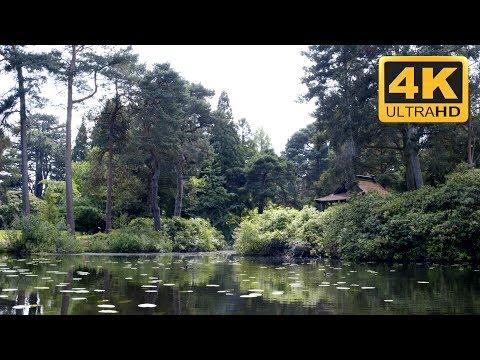 ***** ZEN Relaxation Meditation 4K Japanese Pond Relaxing