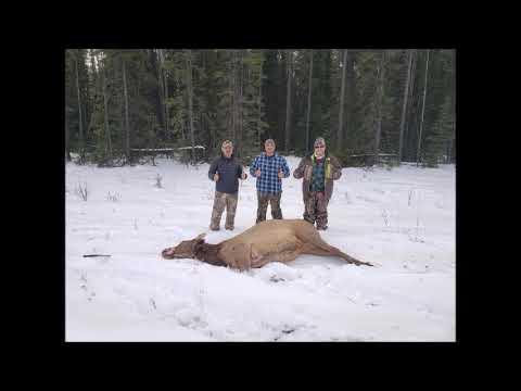 Elk Deer Moose Hunting North Central Alberta, 2019
