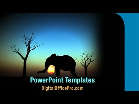 elephant sunrise powerpoint template backgrounds digitalofficepro