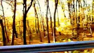 Смотреть клип Jj Cale - Going Down