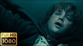 Сэмуайз Гэмджи плывет за Фродо. Властелин колец: Братство кольца.