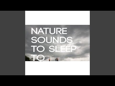 Nature Sounds To Sleep To Rain Noise