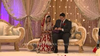 Indian chinese wedding shilpa and james egyptian indian wedding highlights chicago fandeluxe PDF