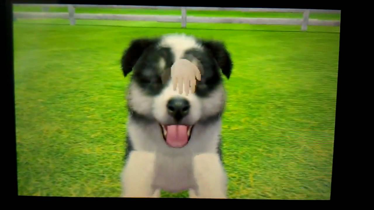 Nintendogs And Cats Youtube