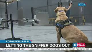 Letting The Sniffer Dogs Out