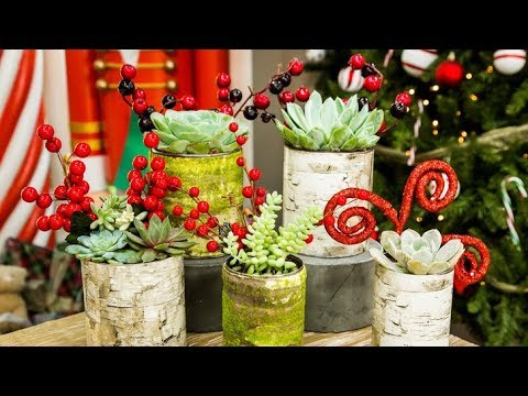 How To Make Birch Wood Tin Can Planters For Christmas Youtube