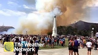 Brush fire sparks evacuation of Griffith Observatory in Los Angeles