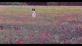 Angela Similea-Inscriptie Pe Un Tablou