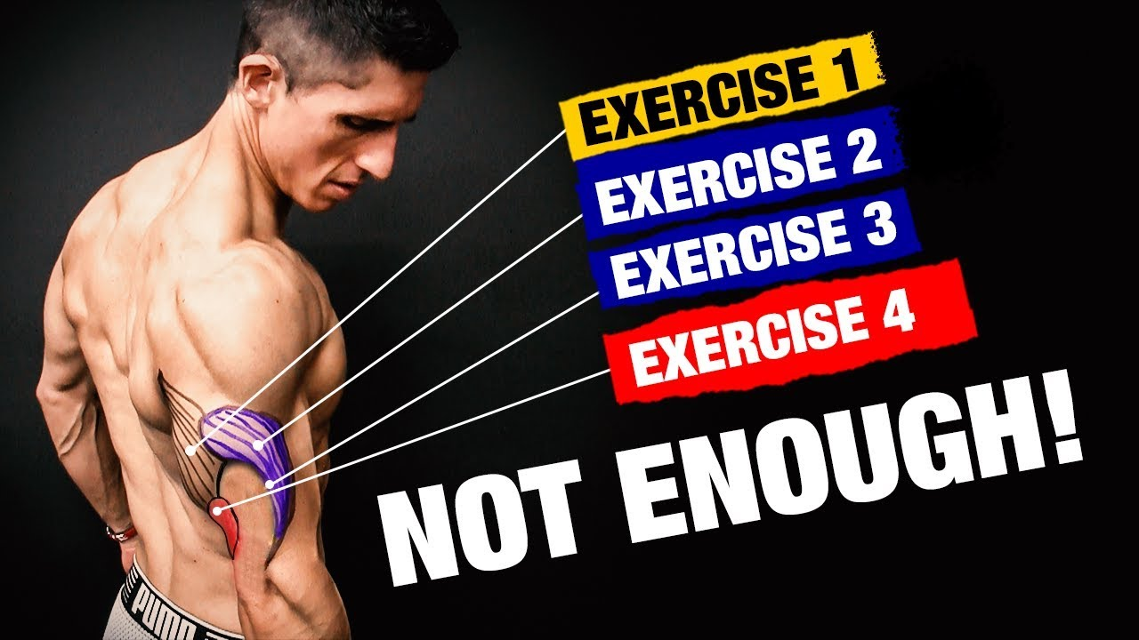 the-perfect-triceps-workout-sets-and-reps-included