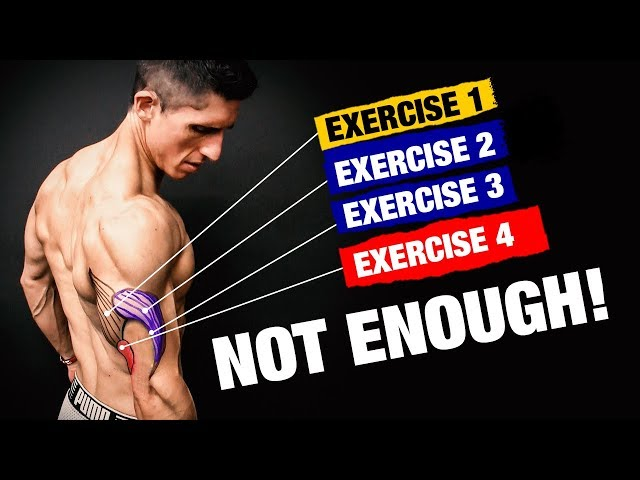 The PERFECT Triceps Workout