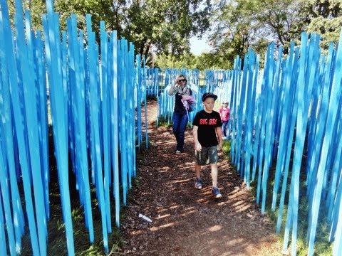 The Blue Stick Garden   Синій сад палиць
