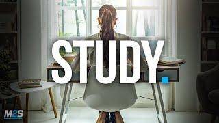 STUDY HARD, WORK HARDER - Best Self Discipline Motivation Compilation for Success & Students