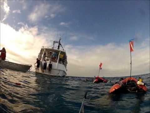 Guam Spearfishing InterPac 2013