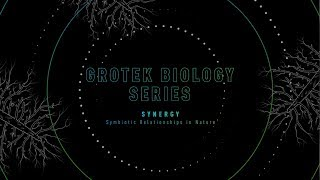GROTEK BIOLOGY SERIES – SYNERGY