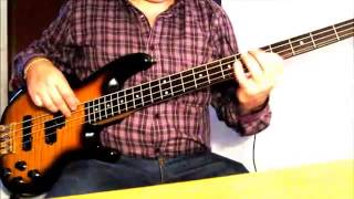 The Police - Nothing Achieving Bass Cover