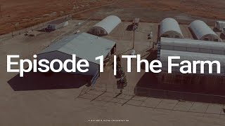 CBD 101 -  Episode 1:   The Farm