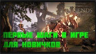 The Elder Scrolls Legends Первые шаги для новичков