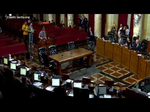'Surfer Bro' hilariously trolls LA City Council with speech defending house parties