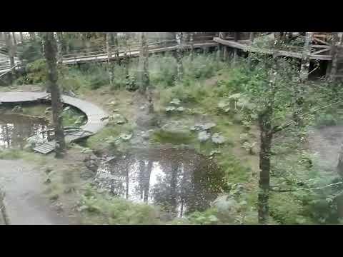 Montana Magica Lodge Huilo-Huilo Chile