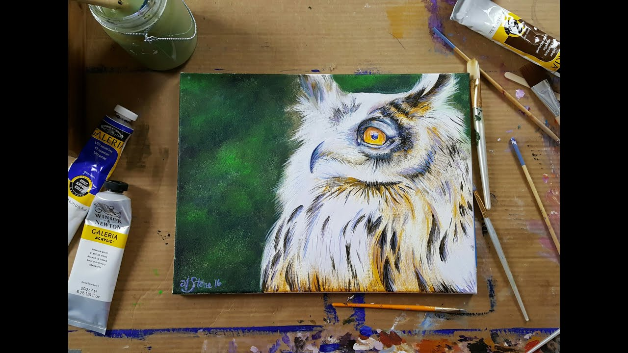 How to paint an owl acrylic painting live stream paint for How paint on canvas