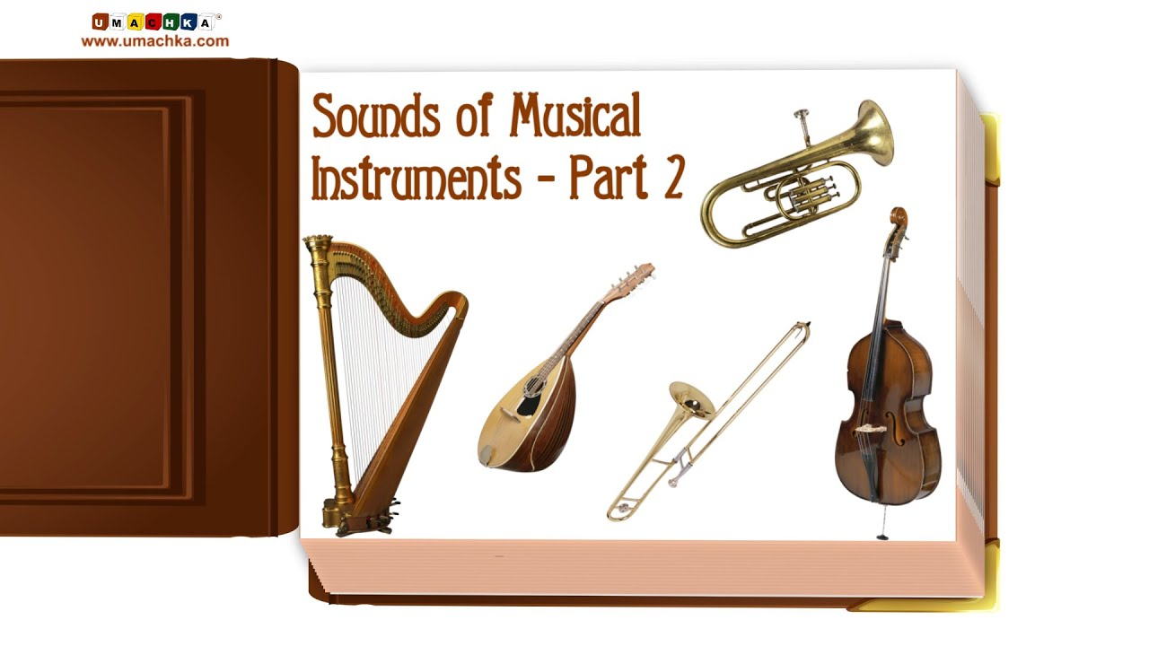 The Best Of Musical Instruments For Toddlers Pics