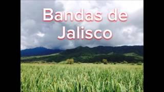 Mix Banda M-1 de Cuisillos Jal