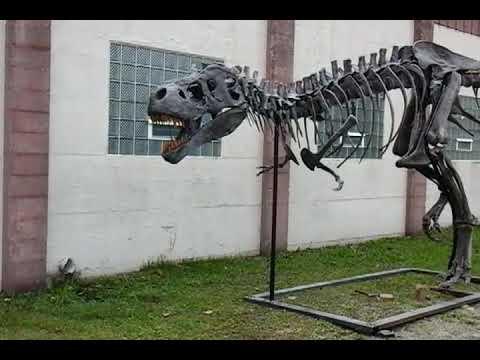 T-rex skelleton Tigg Gary and Mills and i at Treasures of the Earth