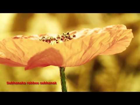 Maher Zain - Subhanallah