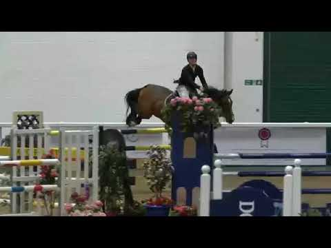 David Coombs   Freddie 55   B & C Winter Qualifier   Aintree Premier Show