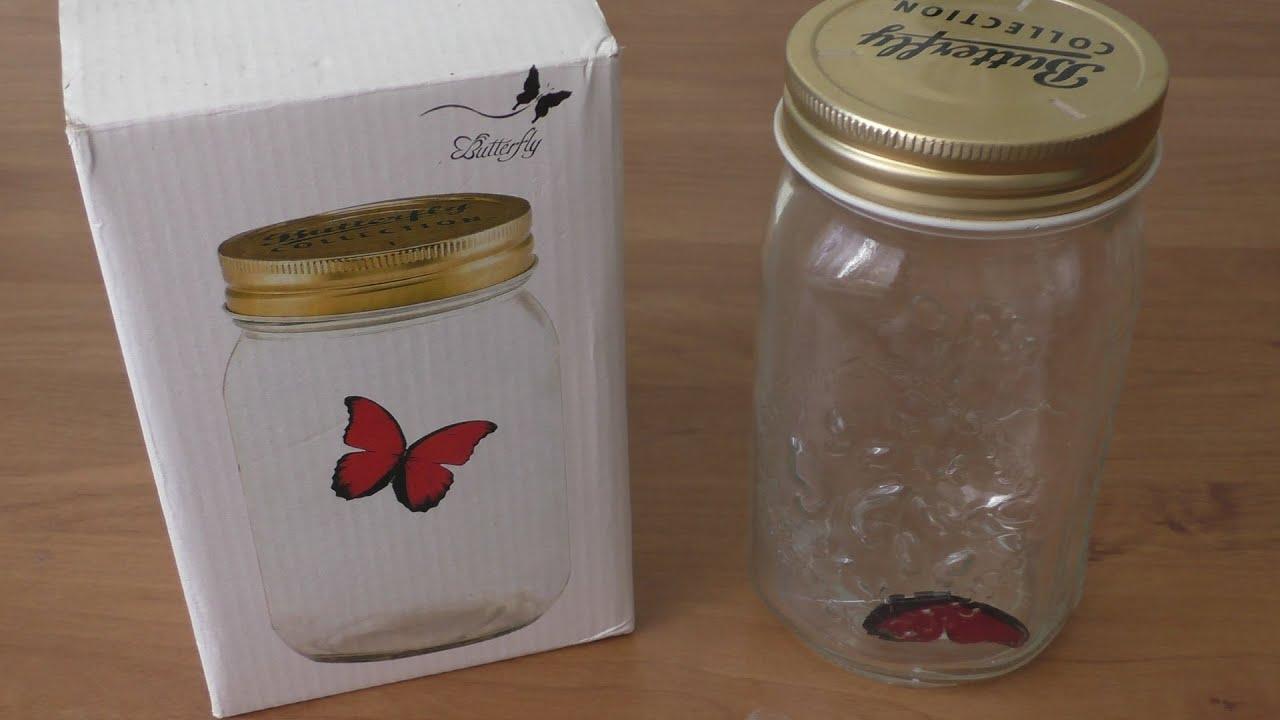 Как кормить бабочку в домашних условиях - YouTube