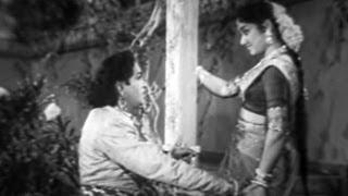 Bobbili Yuddham Songs   Andala Raanive Neeventa Jaanave   Jamuna, Seetaram