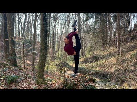 Gym En Forêt