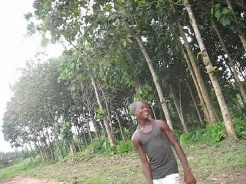 Africa : Ghana Ashanti region village Kokofu