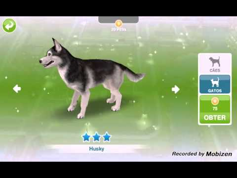 how to get a dog in sims freeplay for free