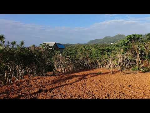 農業畑は土作り堆肥作り鶏糞牛糞腐葉土