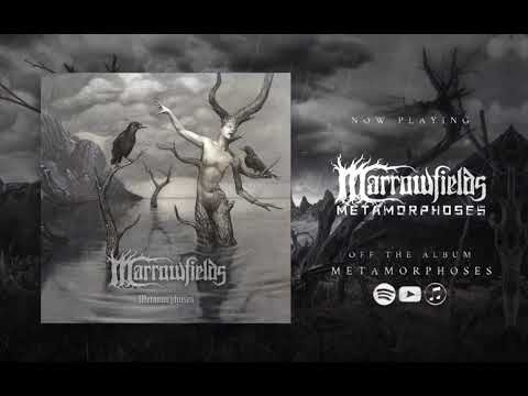 Marrowfields - Metamorphoses (Official Audio 2020) | Black Lion Records