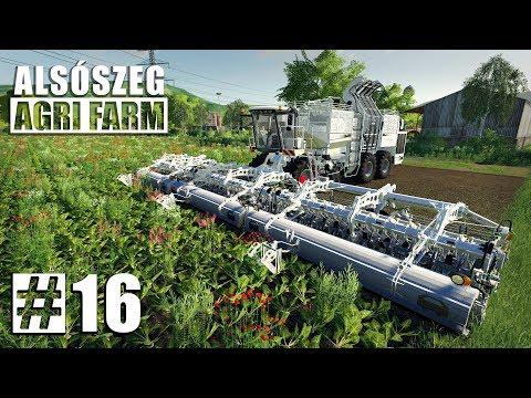 Alsoszeg Agri Farm | FS19 Timelapse #16 | Farming Simulator 19