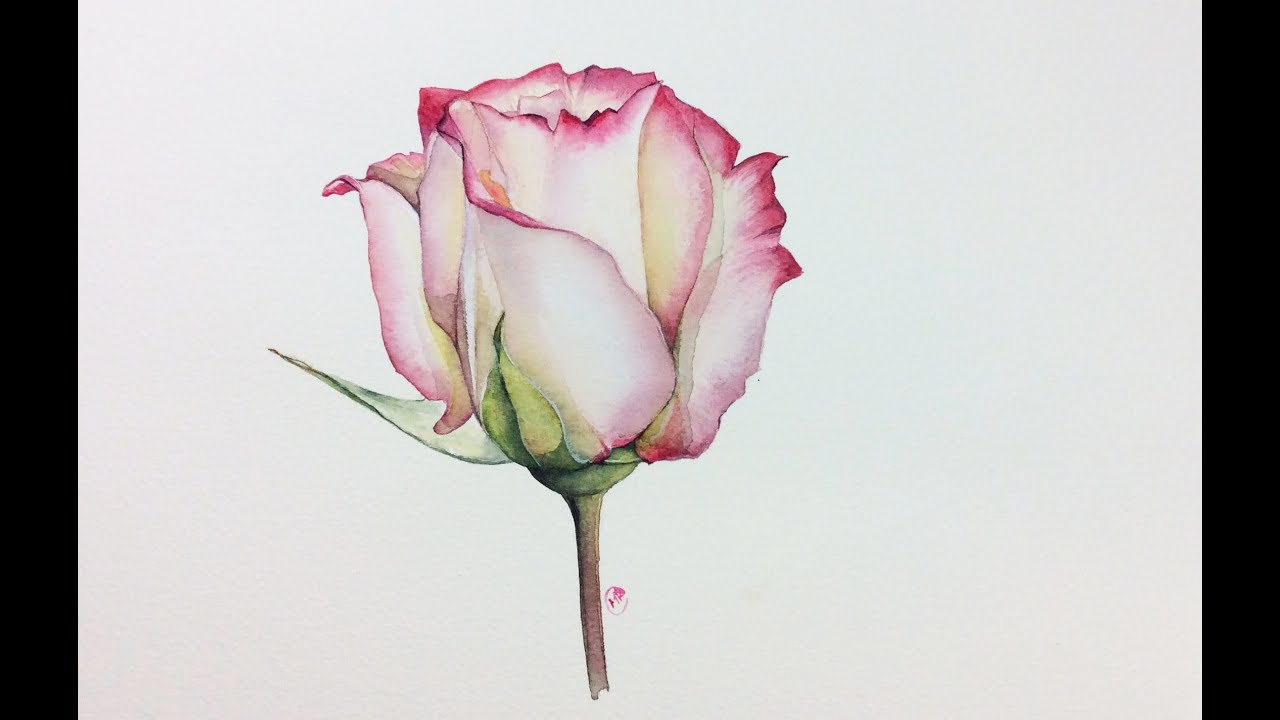 realistic rose in watercolor painting tutorial youtube