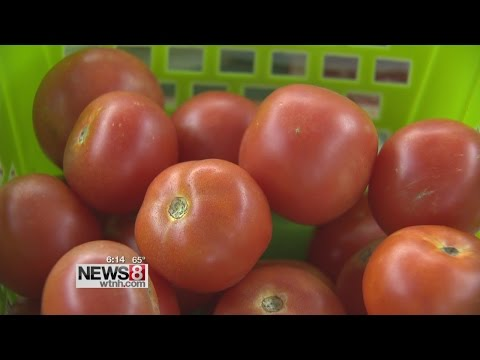 Free Store Connecticut seeks to provide fresh produce to needy
