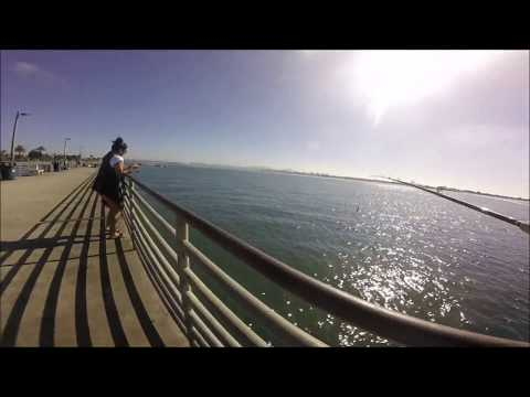 Shore Fishing - Bonito Special, Shelter Island Pier